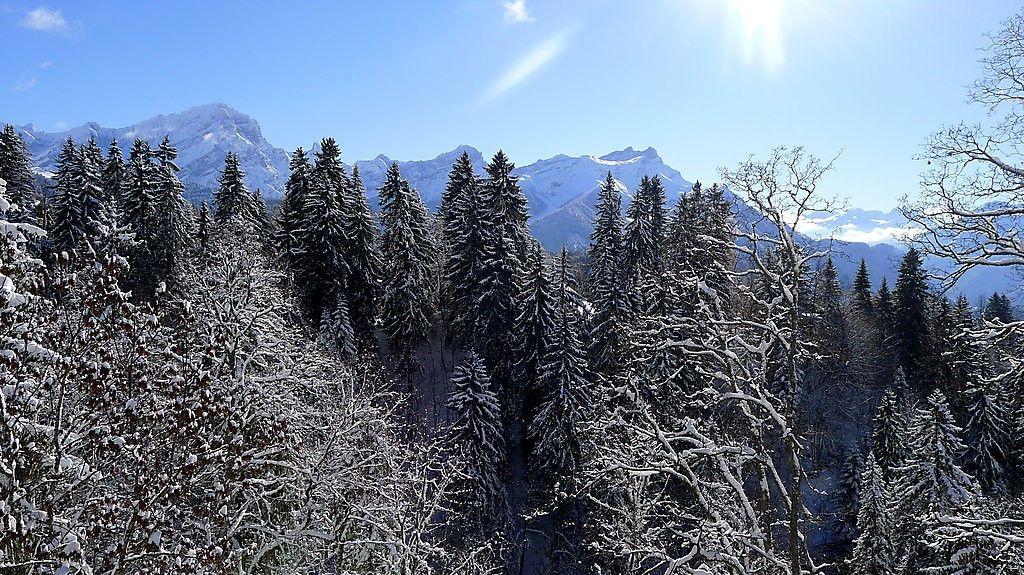 Ormont-Dessous, Kantonen Vaud, Schweiz