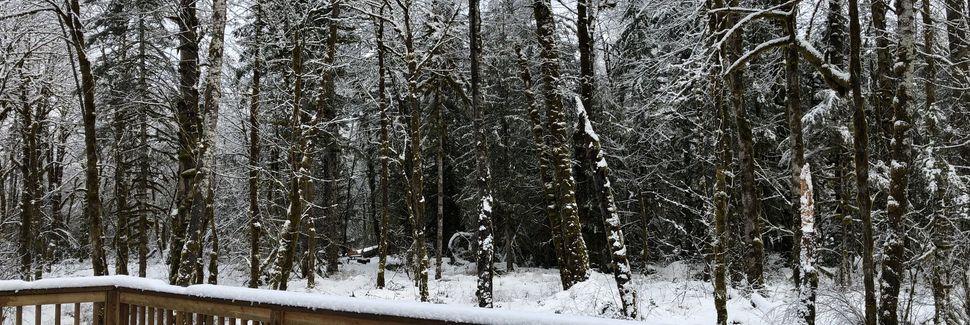 Timberline Lodge-skiområdet, Government Camp, Oregon, USA