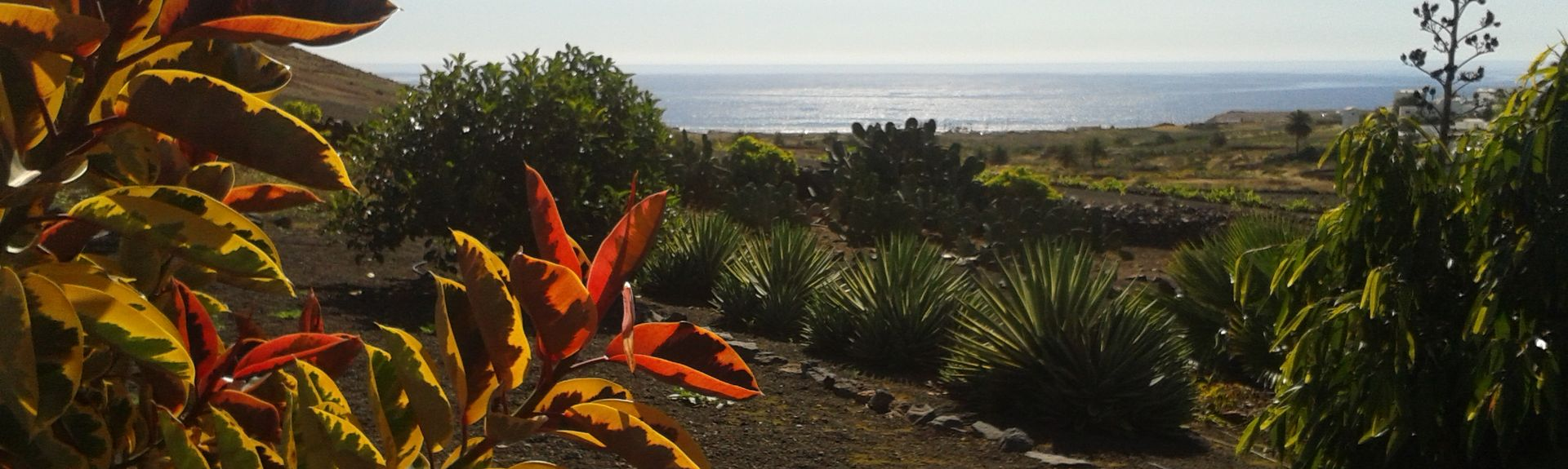 Lanzarote, Kanarieöarna, Spanien