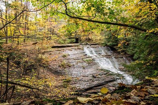 East Springfield, Pennsylvania, United States