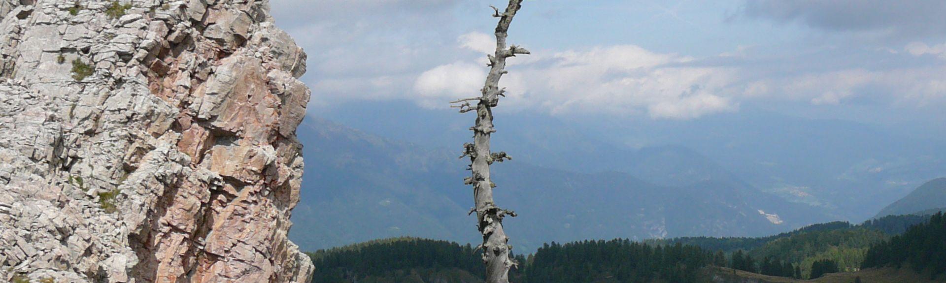 Sporminore, Trento, Trentino-Alto Adige/South Tyrol, Italy