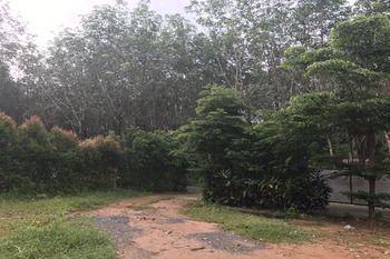 Khao Hin Khong, Koh Chang Tai, Trat Province, Thailand