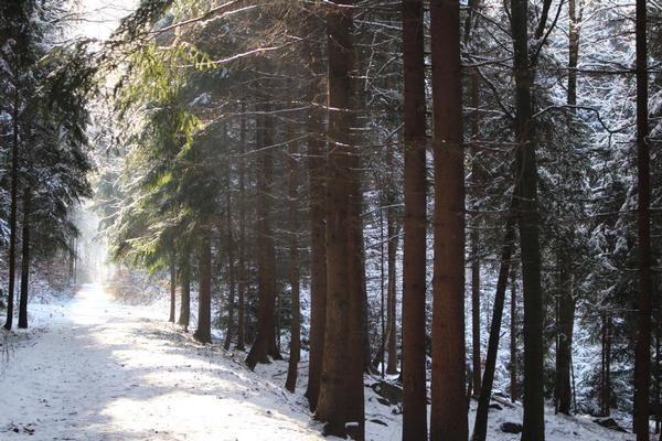 Cunewalde, Saxony, Germany