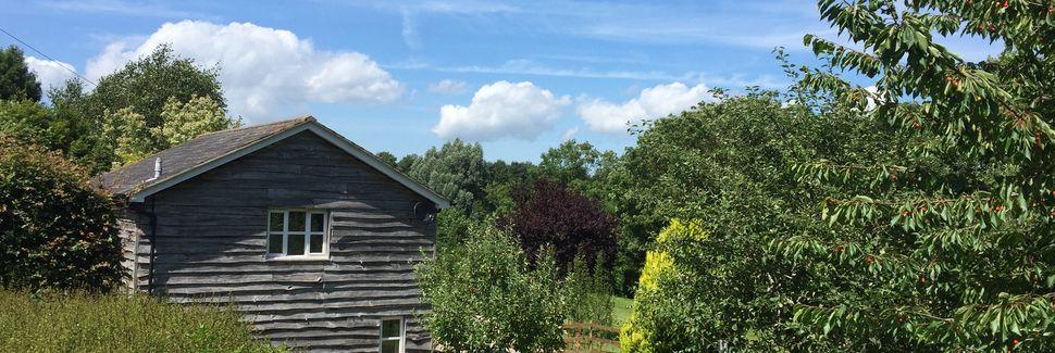 Symondsbury, England, Storbritannien