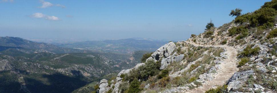 Utrera, Andalucía, España