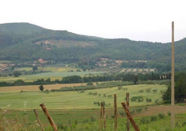 Roccatederighi, Toscana, Italia