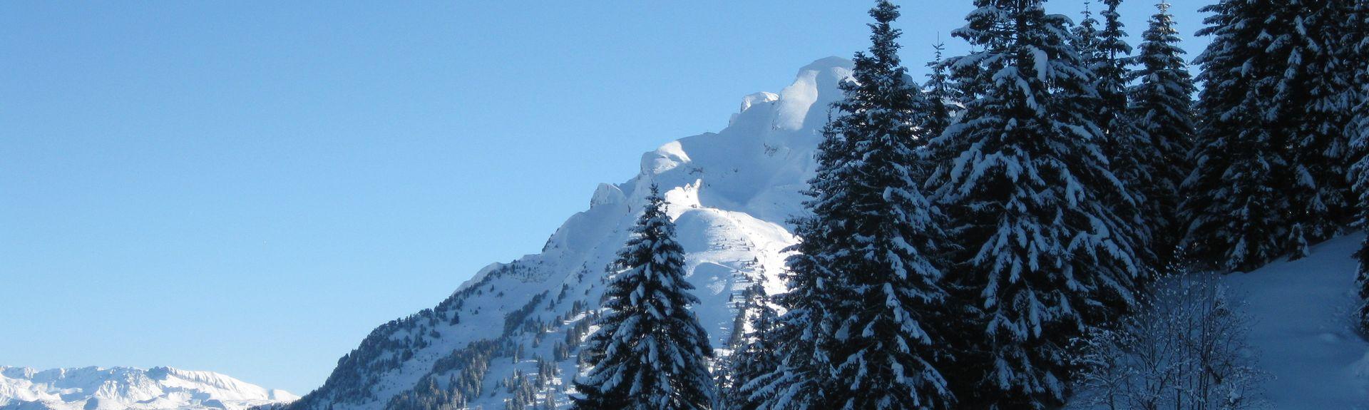 Les Pèlerins station, Chamonix-Mont-Blanc, Auvergne - Rhône - Alpes, Frankrike
