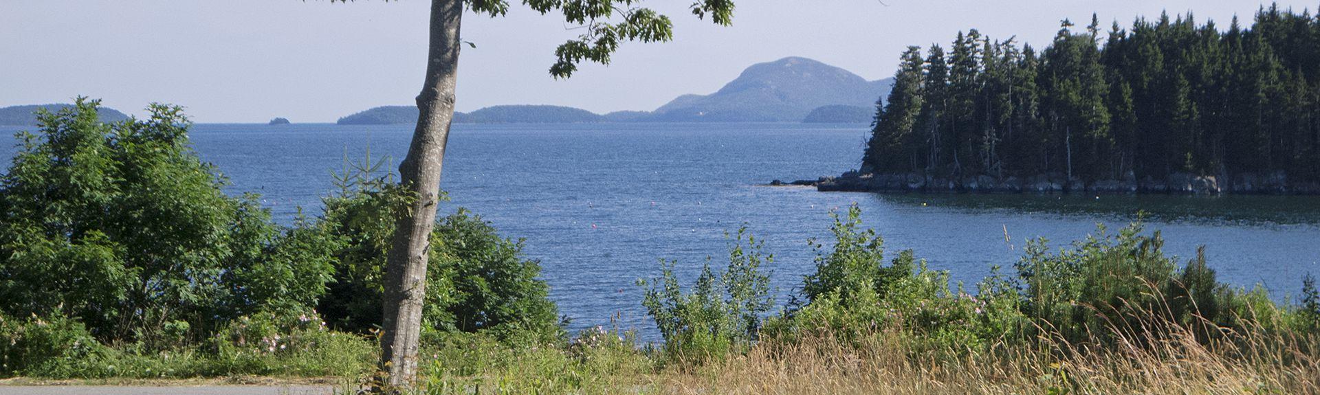 Asticou Azalea Garden, Northeast Harbor, Maine, États-Unis d'Amérique