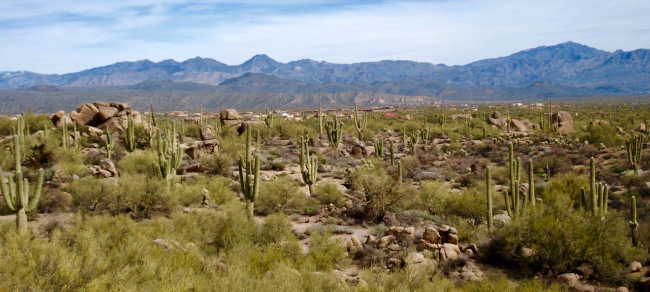 The Allison, Scottsdale, AZ, USA