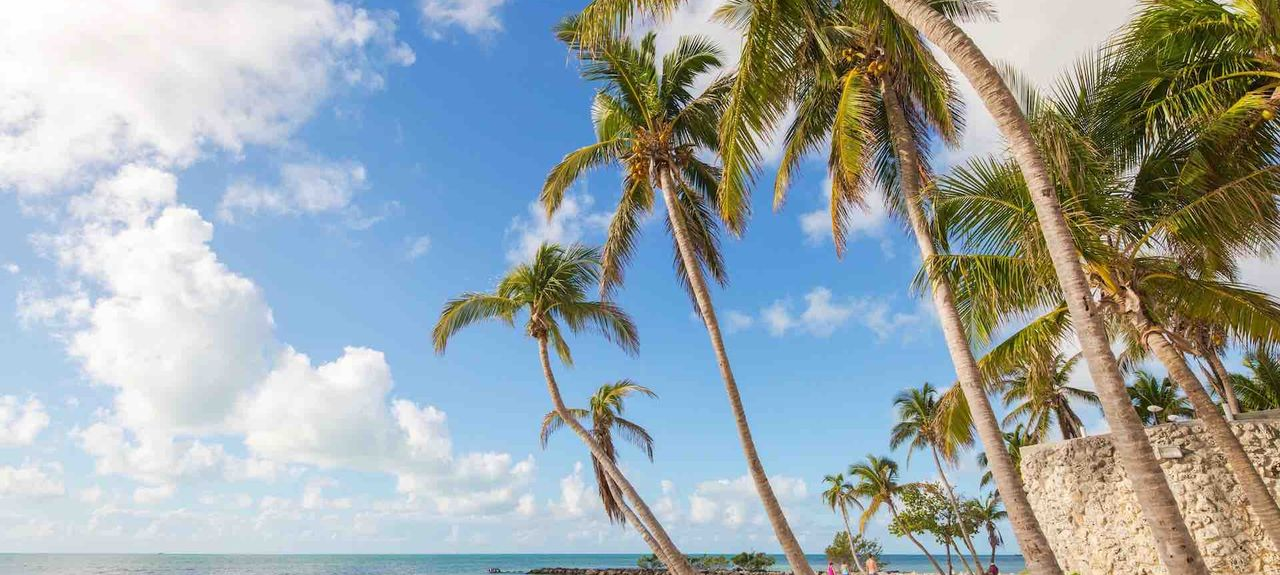 Coral Hammock, Stock Island, Key West, FL, USA