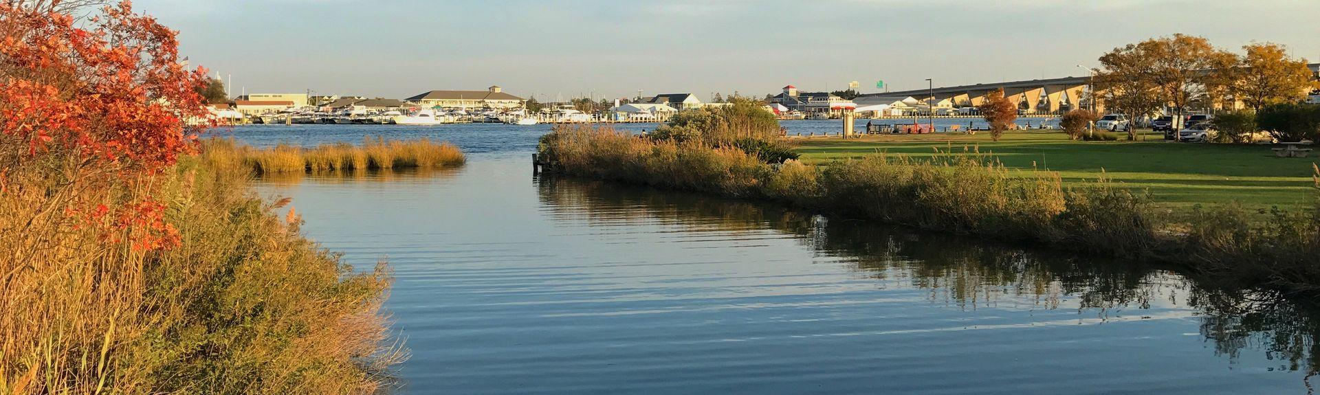 Kent Island, Maryland, USA