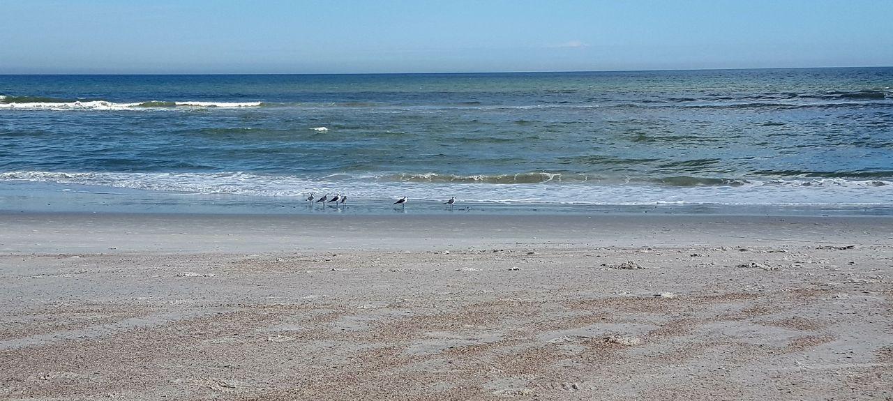 Forest Ridge Village, Fernandina Beach, FL, USA