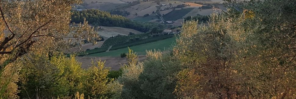 Montelparo, Marches, Italie