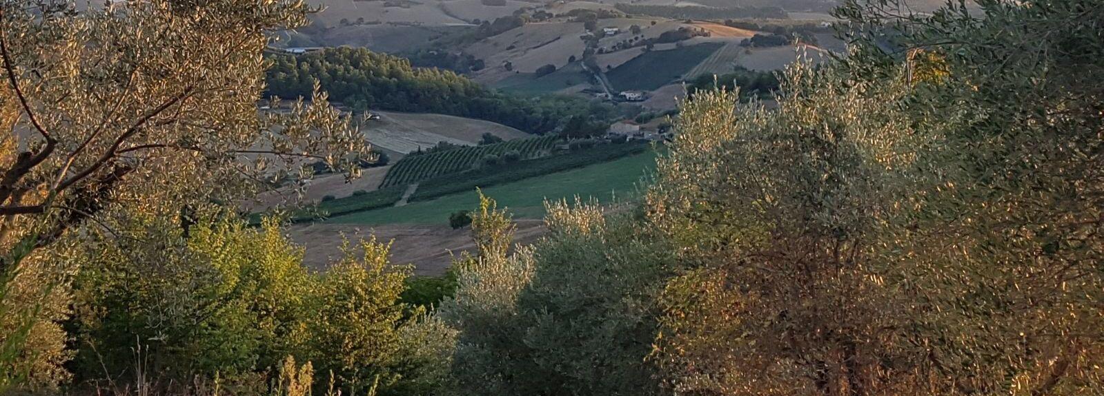 Montelparo, Fermo, Marche, Italy