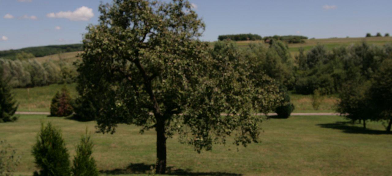 Baranya County, Hungary