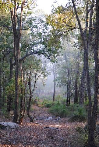Shire of Mundaring, WA, Australia
