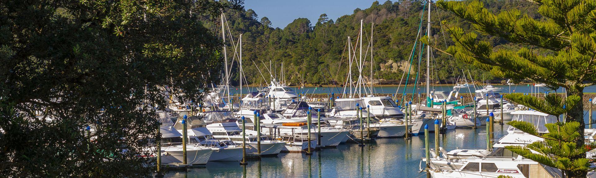 Cooks Beach, Thames-Coromandel, Waikato, New Zealand