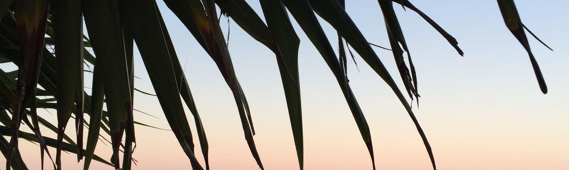 Dunoon, Nova Gales do Sul, Austrália