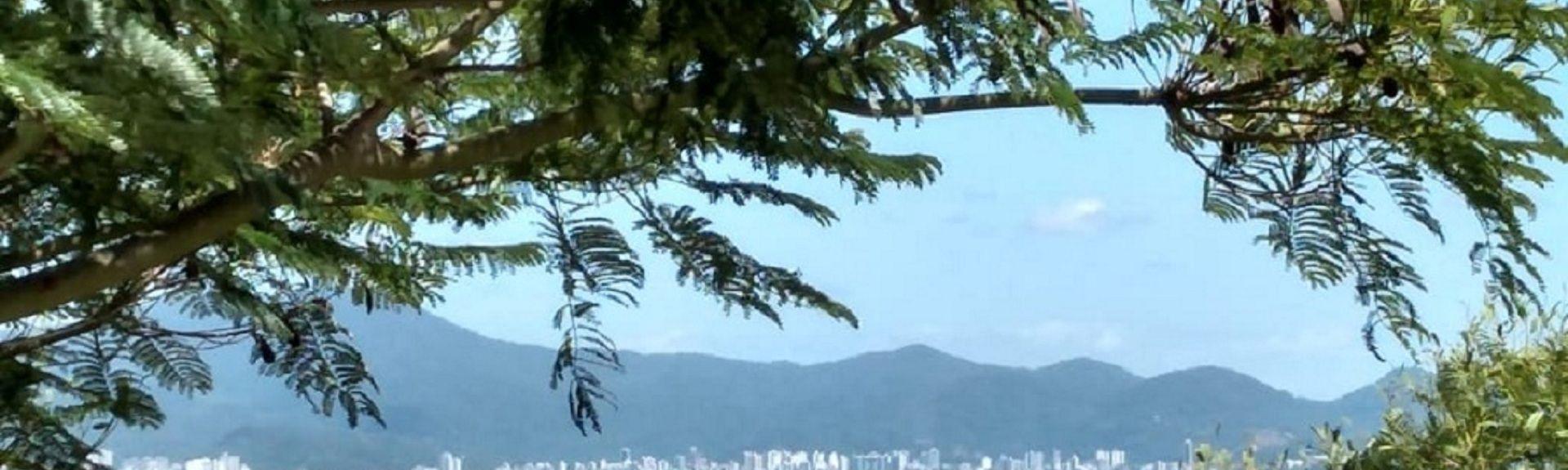 Zimbros, Bombinhas, South Region, Brazil