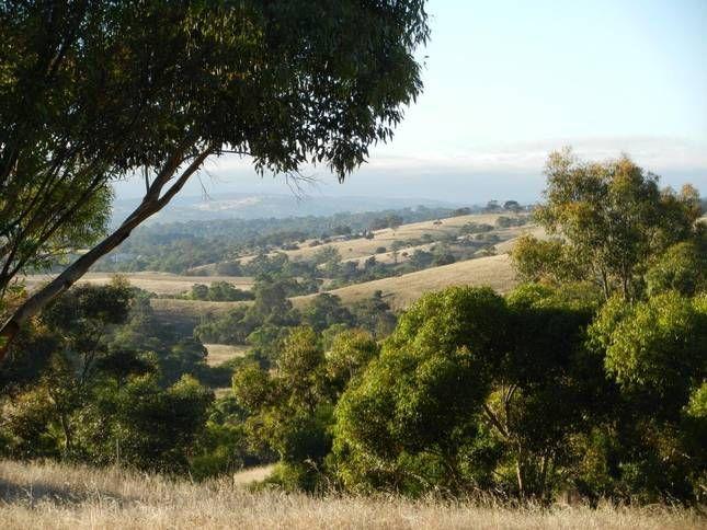 Gawler South SA, Australia