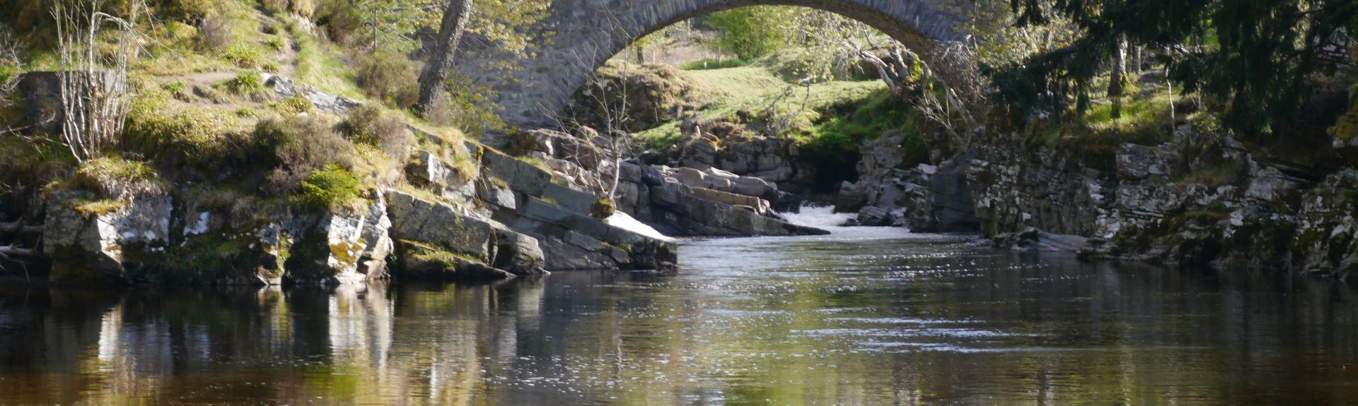 Speyside Wildlife, Aviemore, Schottland, Großbritannien