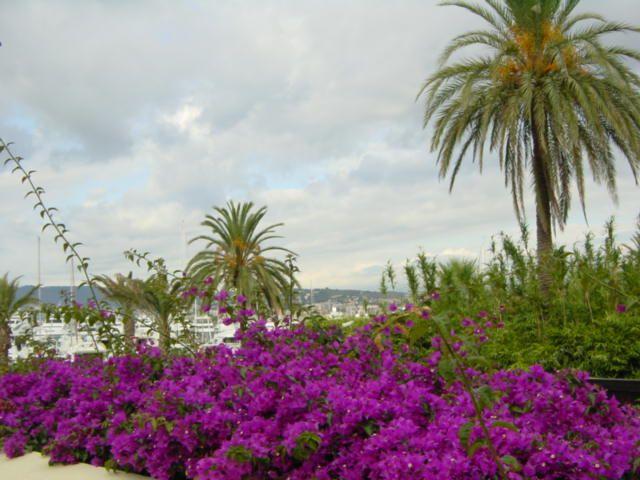 Pointe Croisette, Cannes, Provence-Alpes-Côte d'Azur, Ranska