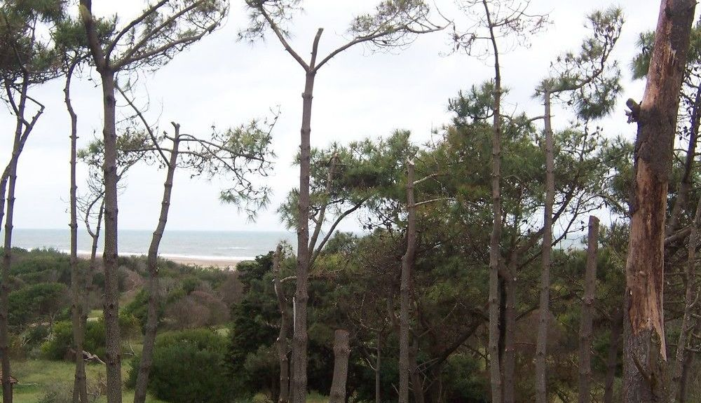 Villa Gesell, Buenos Aires Province, Argentina