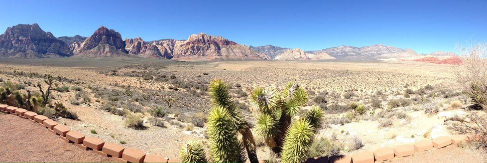 Spring Valley, Nevada, Forente Stater