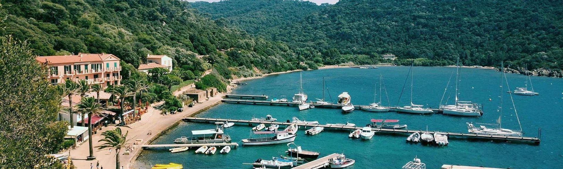 Port-Cros, Prowansja-Alpy-Lazurowe Wybrzeże, Francja