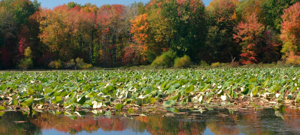 Pymatuning South, Pensilvânia, Estados Unidos