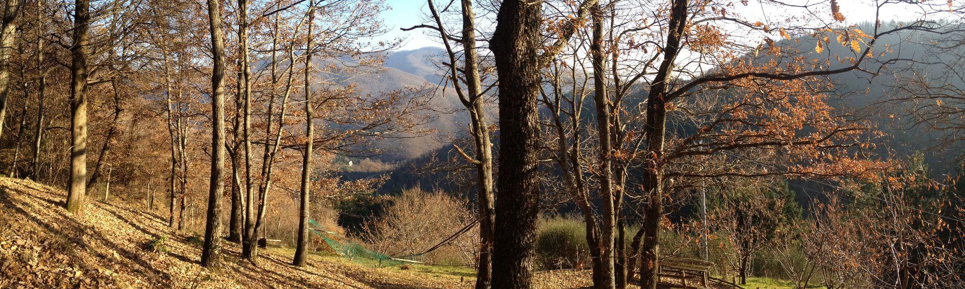 Valagnesi, Arezzo, Tuscany, Italy