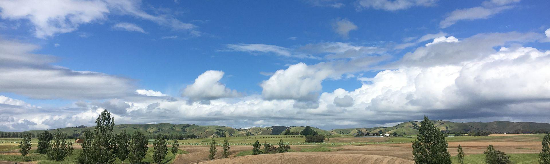Région de Wairarapa, Région de Wellington, Nouvelle-Zélande