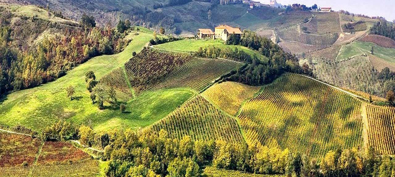 Cantine Romagnoli, Vigolzone, Emilia Romagna, Italia