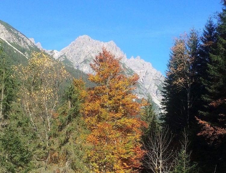 Vorderhornbach, Tyrol, Austria