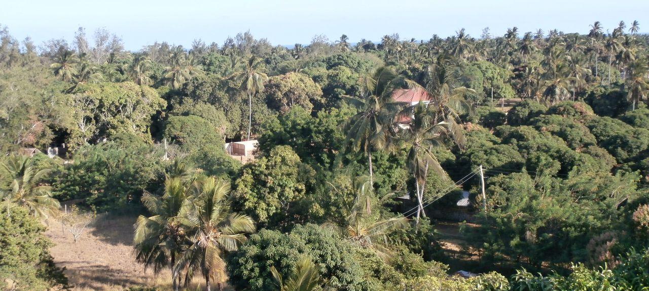 Mombasa, Mombasa, Kenya