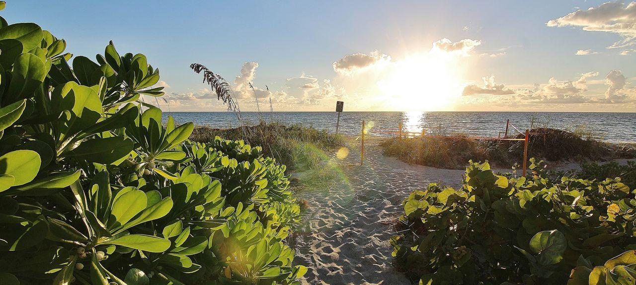 Belleair Beach Club, Belleair Beach, FL, USA