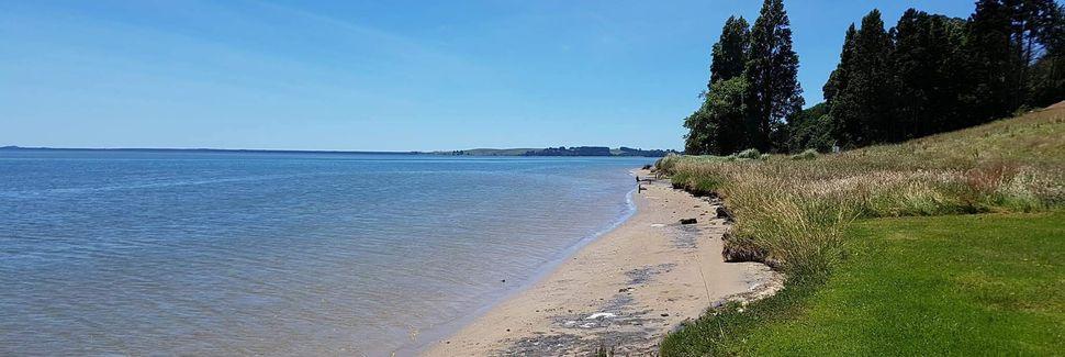 Omokoroa, Western Bay of Plenty, Bay of Plenty, New Zealand