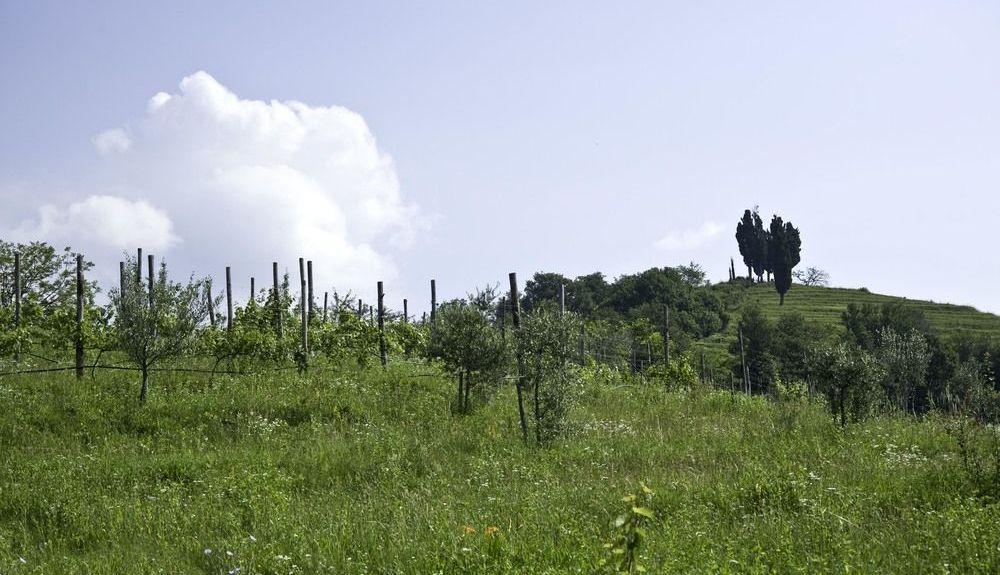Seregno, Lombardei, Italien