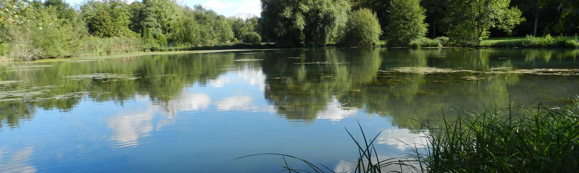 Poligny, Seine-et-Marne (departement), Frankrijk