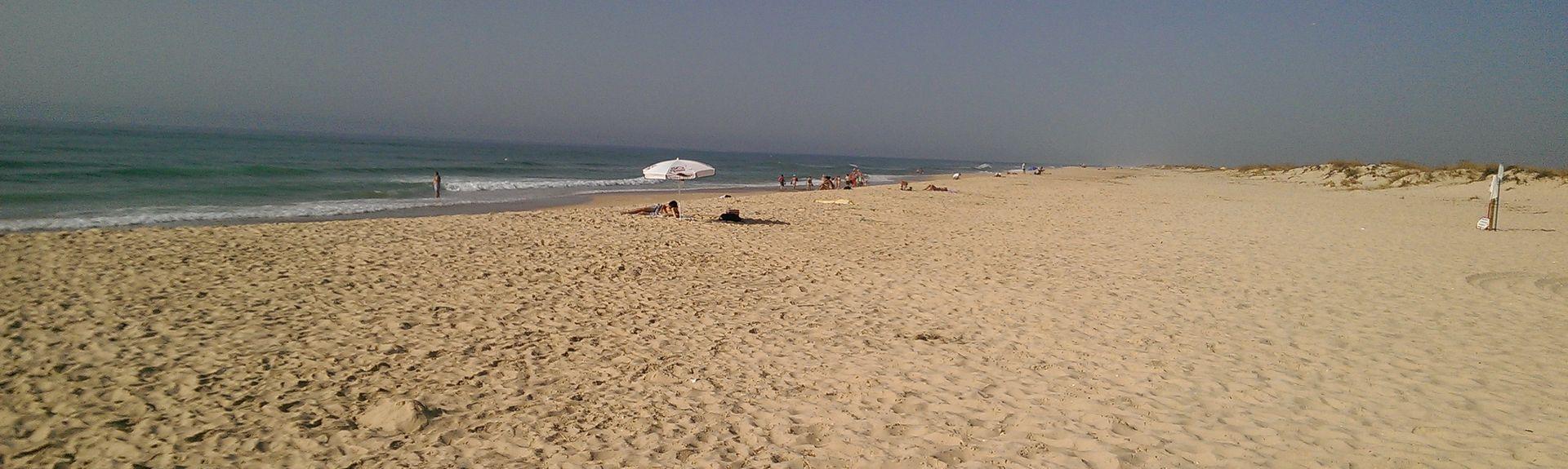 Praia da Culatra-Mar, Olhao, Portugal