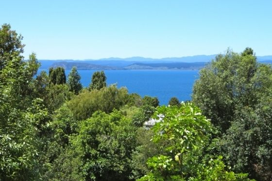 Omori, Taupo, Waikato, New Zealand