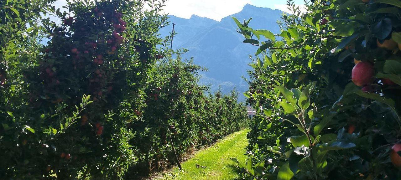 Centa San Nicolò, Trento, Trentino-Alto Adige/South Tyrol, Italy