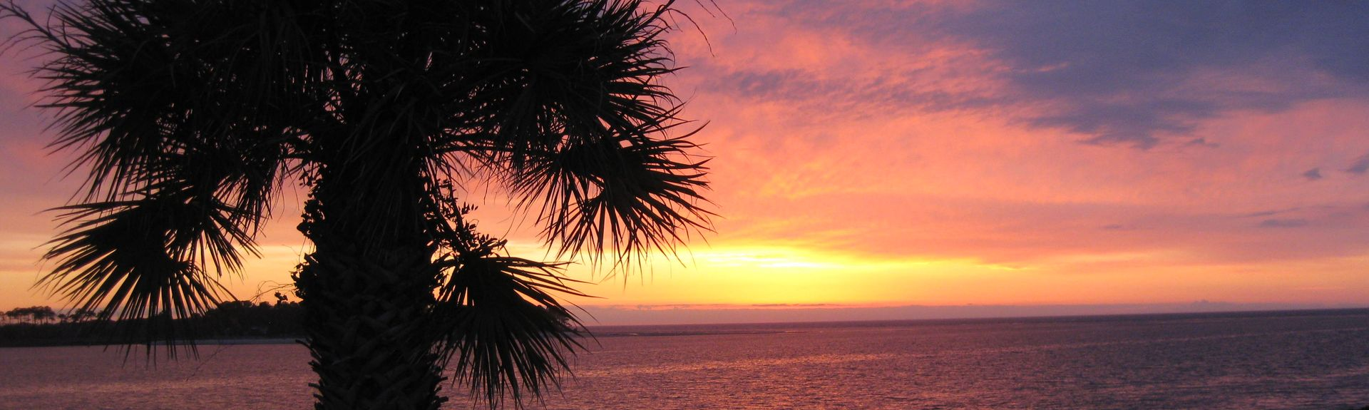 Hunting Island State Park, South Carolina, USA