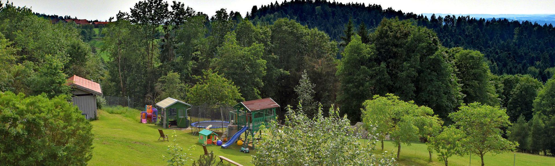 Bavarian Forest National Park, Neuschoenau, Germany