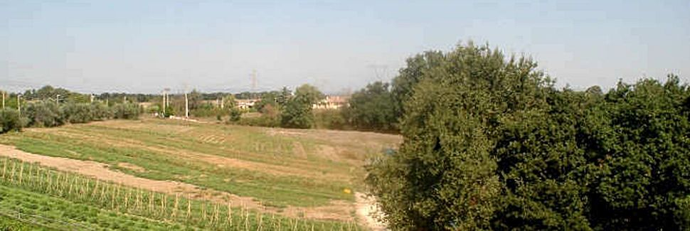 Zona XLV Castel di Guido, Rom, Lazio, Italien