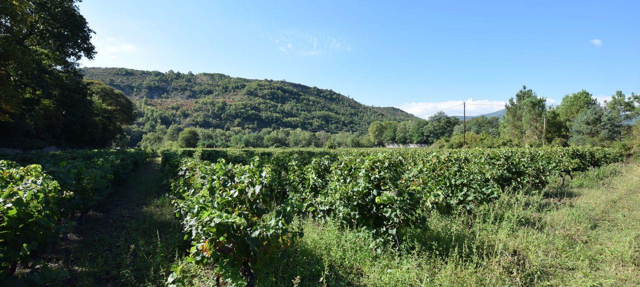 Chassagnes, Les Vans, Alvernia-Rodano-Alpi, Francia