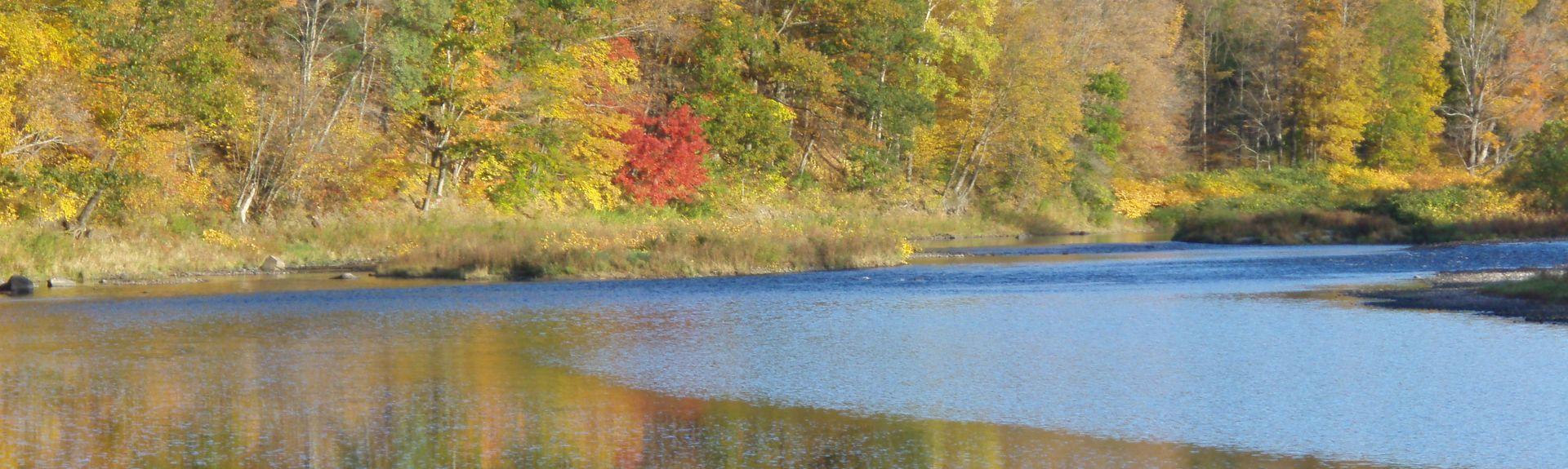 Preston Township, Pennsylvania, United States of America