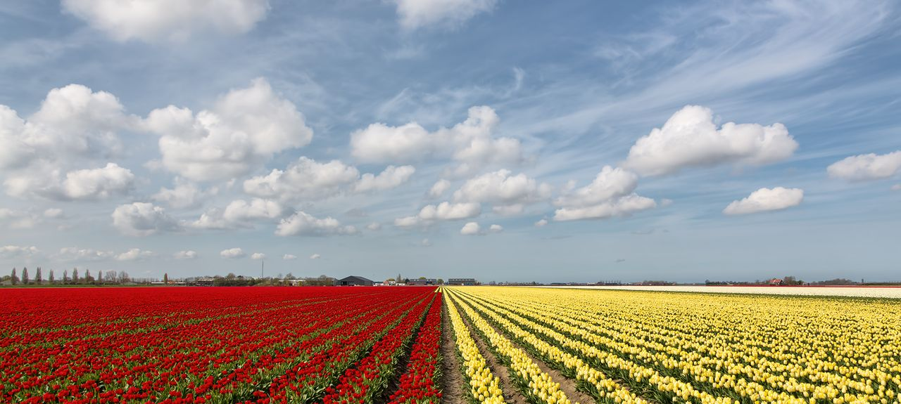 Municipality of Castricum, Netherlands