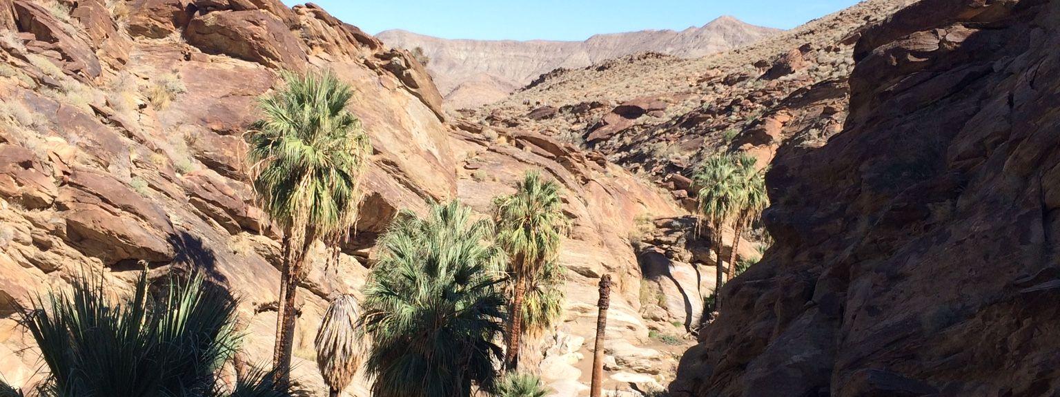 Canyon Corridor, Palm Springs, Californie, États-Unis