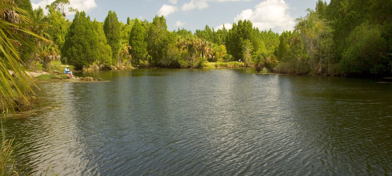 Suwannee River, United States